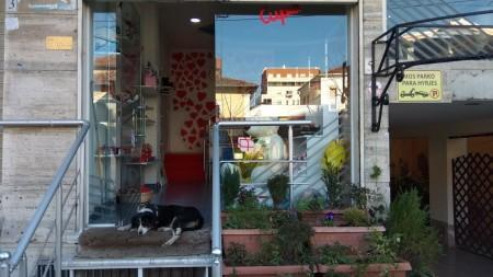 Shop - For sale Rruga Qemal Stafa