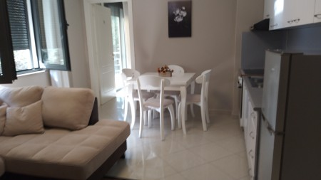 Apartment 1+1 - For Rent Rruga Margarita Tutulani